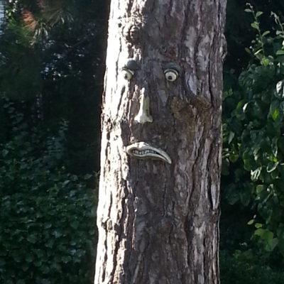 Versierde boom van de buren